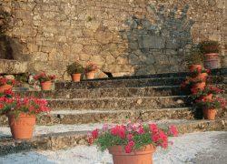 012_Bachao turismo rural Galicia